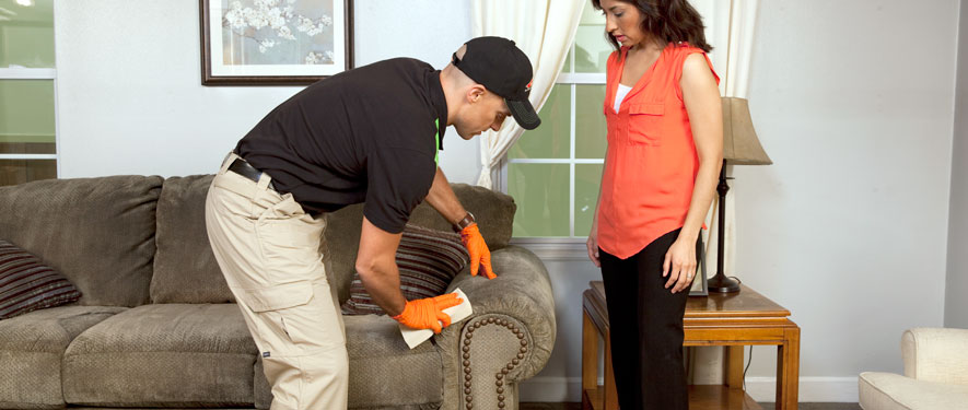 Brentwood, CA carpet upholstery cleaning
